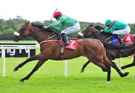 Zoffany Sires Pair Of Promising Maiden Winners
